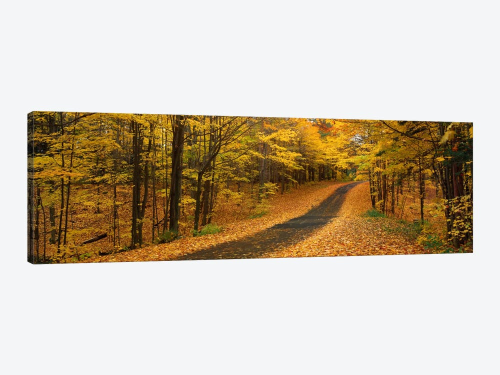 Autumn Road, Emery Park, New York State, USA by Panoramic Images 1-piece Canvas Art Print