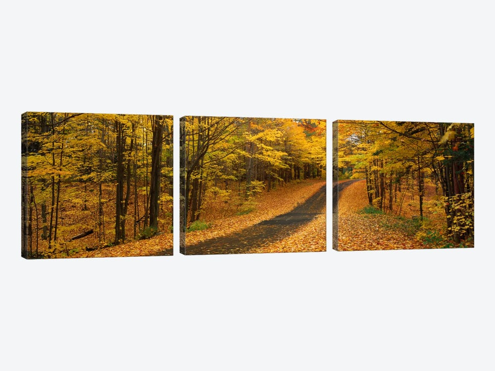 Autumn Road, Emery Park, New York State, USA by Panoramic Images 3-piece Canvas Print