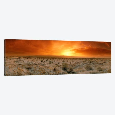 Desert Sunset, Palm Springs, Riverside County, California, USA Canvas Print #PIM25} by Panoramic Images Art Print