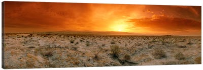 Desert Sunset, Palm Springs, Riverside County, California, USA Canvas Art Print