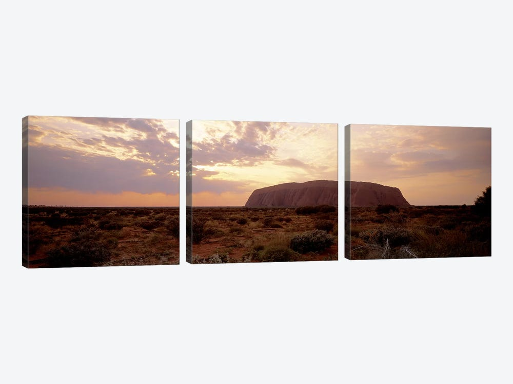 Uluru-Kata Tjuta National Park Northern Territory Australia by Panoramic Images 3-piece Art Print