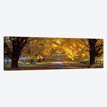 Road, Baltimore County, Maryland, USA Canvas Print #PIM2659} by Panoramic Images Canvas Artwork