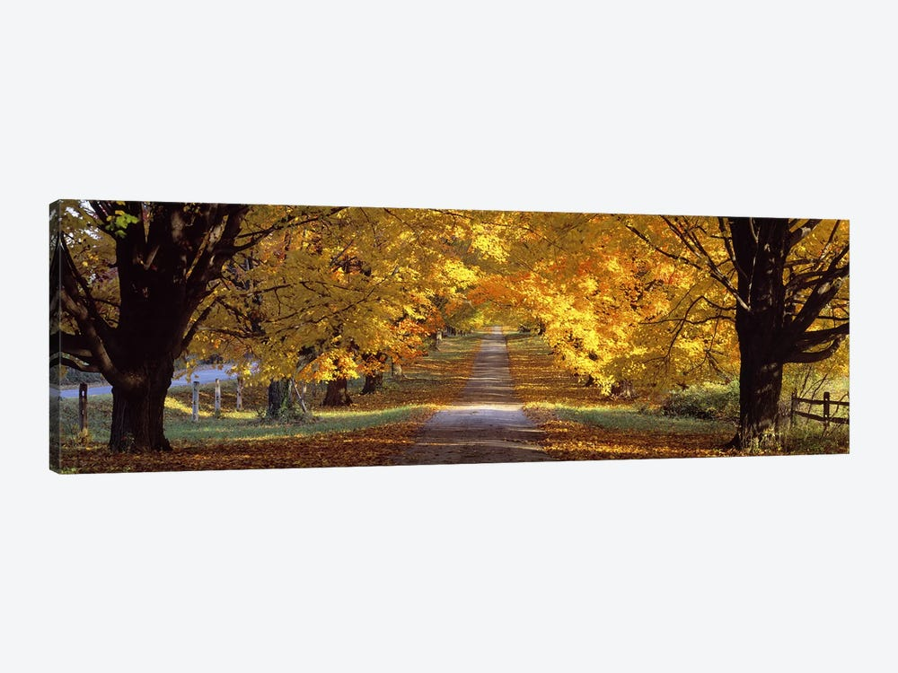 Road, Baltimore County, Maryland, USA by Panoramic Images 1-piece Canvas Art