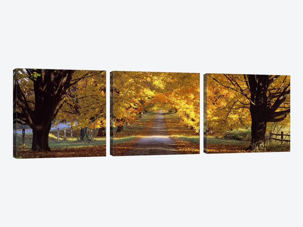 Road, Baltimore County, Maryland, USA by Panoramic Images 3-piece Canvas Artwork