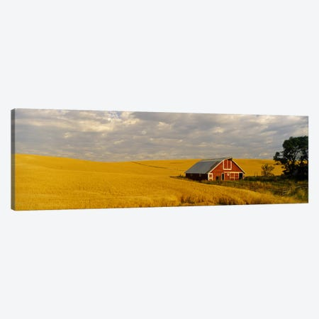Barn in a wheat field, Palouse, Washington State, USA Canvas Print #PIM2669} by Panoramic Images Art Print