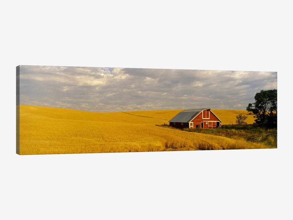 Barn in a wheat field, Palouse, Washington State, USA by Panoramic Images 1-piece Art Print