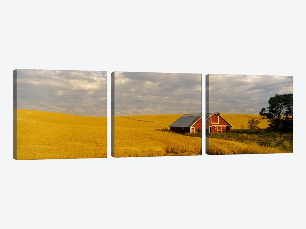 Barn in a wheat field, Palouse, Washington State, USA by Panoramic Images 3-piece Art Print