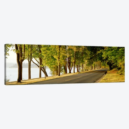 Trees on both sides of a road, Lake Washington Boulevard, Seattle, Washington State, USA Canvas Print #PIM2671} by Panoramic Images Canvas Art
