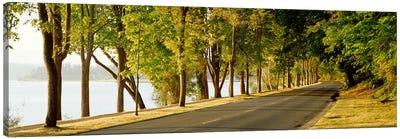 Trees on both sides of a road, Lake Washington Boulevard, Seattle, Washington State, USA Canvas Print #PIM2671