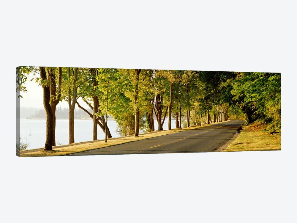 Trees on both sides of a road, Lake Washington Boulevard, Seattle, Washington State, USA 1-piece Canvas Wall Art