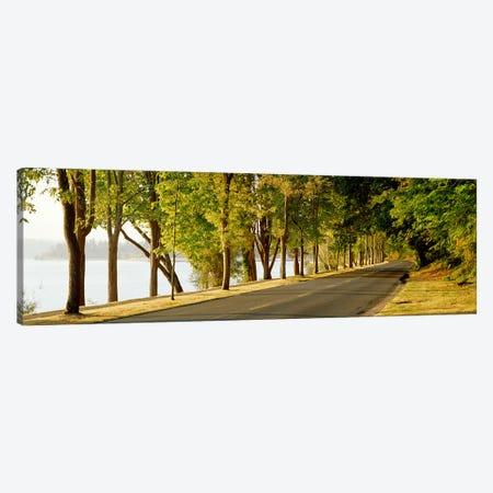 Trees on both sides of a road, Lake Washington Boulevard, Seattle, Washington State, USA Canvas Print #PIM2671} by Panoramic Images Canvas Art