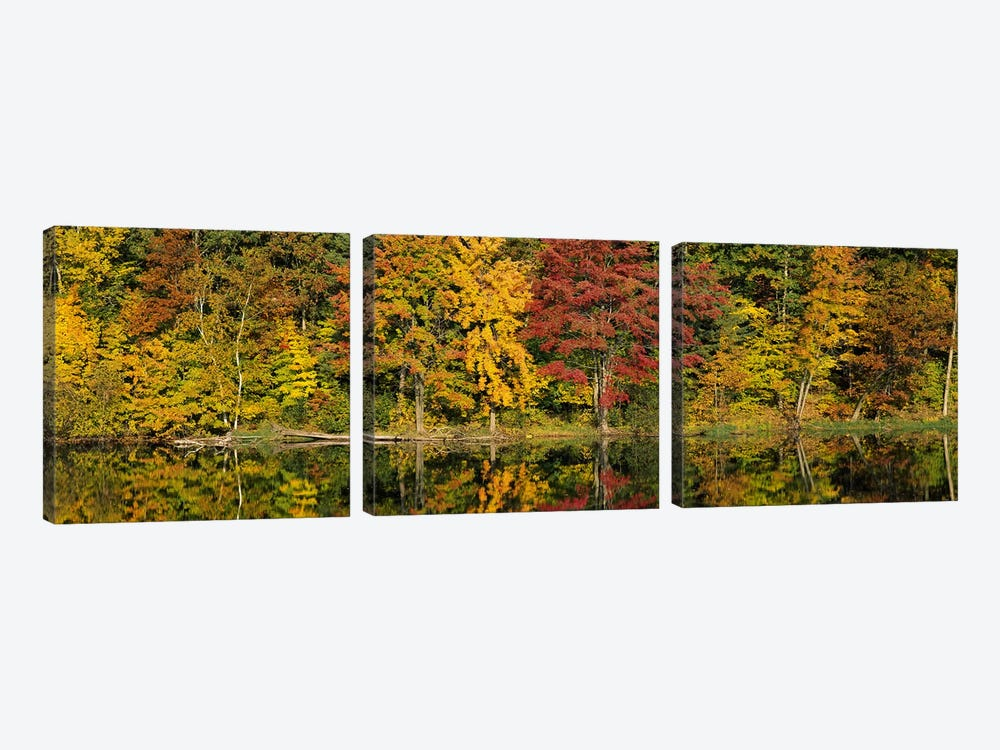 Reflection of trees in waterSaratoga Springs, New York City, New York State, USA by Panoramic Images 3-piece Art Print
