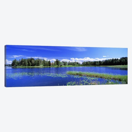 Sunny Daytime Landscape, Finnish Lakeland, Finland Canvas Print #PIM2687} by Panoramic Images Canvas Wall Art
