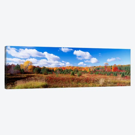 Autumnal Wooded Landscape, New York, USA Canvas Print #PIM270} by Panoramic Images Art Print