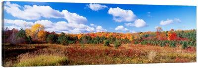 Autumnal Wooded Landscape, New York, USA Canvas Print #PIM270