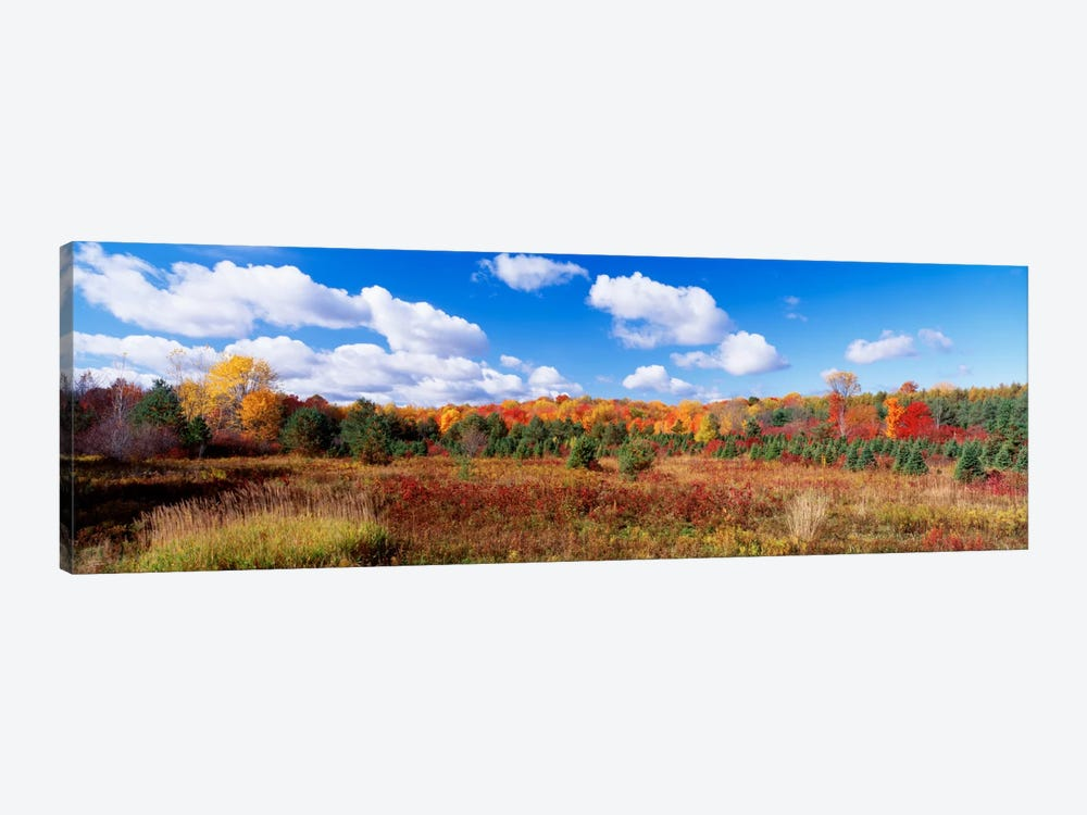 Autumnal Wooded Landscape, New York, USA by Panoramic Images 1-piece Canvas Art