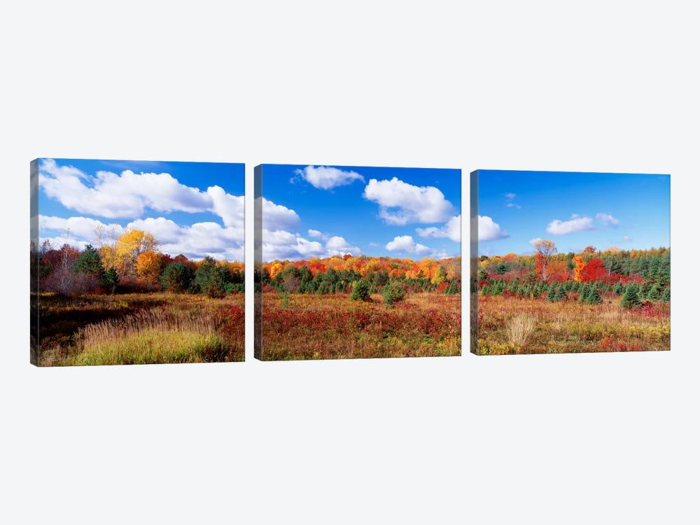 Autumnal Wooded Landscape, New York, USA by Panoramic Images 3-piece Canvas Art