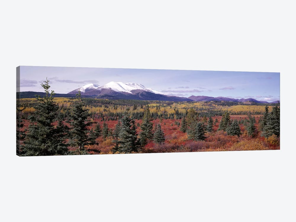 Forested Landscape, Yukon Territory, Canada by Panoramic Images 1-piece Canvas Art Print