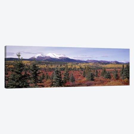 Forested Landscape, Yukon Territory, Canada 3-Piece Canvas #PIM2719} by Panoramic Images Art Print