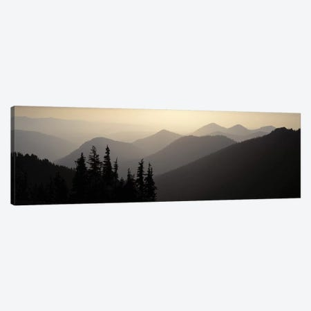 Mount Rainier National Park WA USA Canvas Print #PIM2729} by Panoramic Images Canvas Artwork