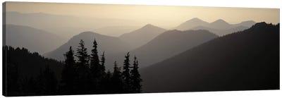 Mount Rainier National Park WA USA Canvas Print #PIM2729