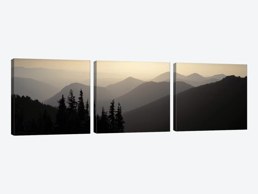 Mount Rainier National Park WA USA by Panoramic Images 3-piece Canvas Artwork