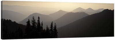 Mount Rainier National Park WA USA Canvas Art Print