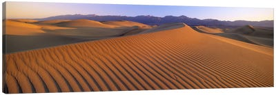 Windswept Sand Dunes, Death Valley National Park, USA Canvas Art Print
