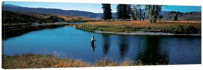 Trout fisherman Slough Creek Yellowstone National Park WY Canvas Art Print