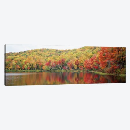 Autumnal Landscape, Savoy Mountain State Forest, Massachusetts, USA Canvas Print #PIM2796} by Panoramic Images Canvas Art