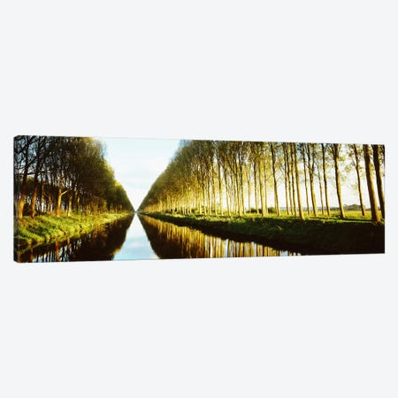 Tree-Lined Canal (Damse Vaart), West Flanders, Flemish Region, Belgium Canvas Print #PIM2803} by Panoramic Images Canvas Art Print