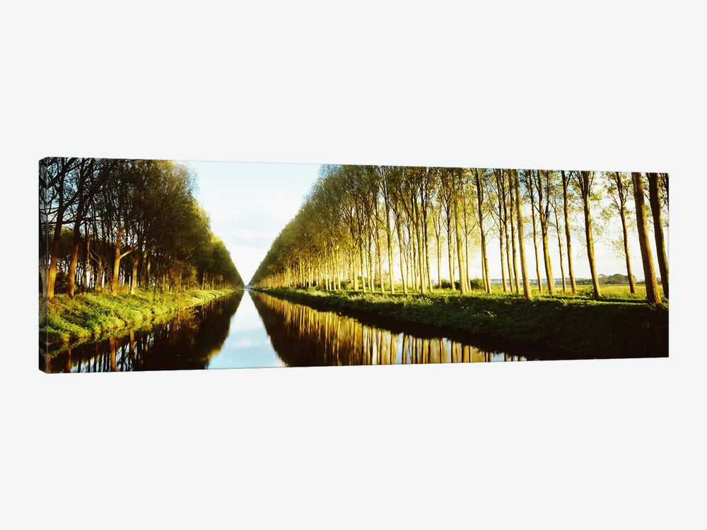 Tree-Lined Canal (Damse Vaart), West Flanders, Flemish Region, Belgium 1-piece Canvas Artwork