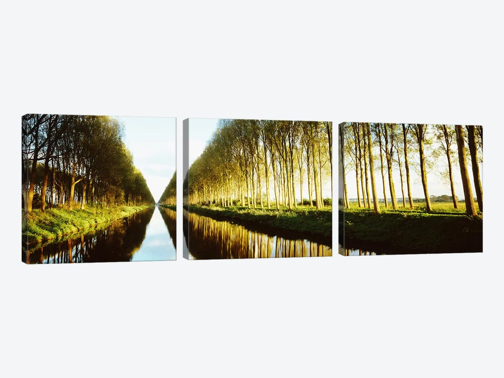 Tree-Lined Canal (Damse Vaart), West Flanders, Flemish Region, Belgium 3-piece Canvas Wall Art