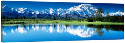 Denali National Park AK USA Canvas Art Print