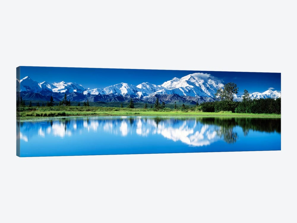 Denali National Park AK USA by Panoramic Images 1-piece Canvas Art Print