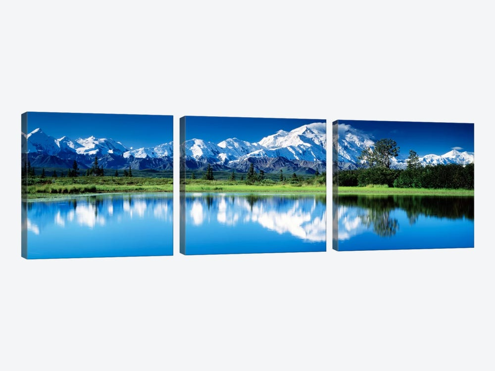 Denali National Park AK USA by Panoramic Images 3-piece Canvas Art Print