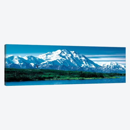 Denali National Park AK USA Canvas Print #PIM281} by Panoramic Images Canvas Artwork