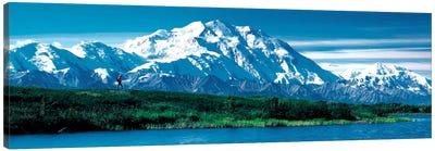 Denali National Park AK USA Canvas Print #PIM281