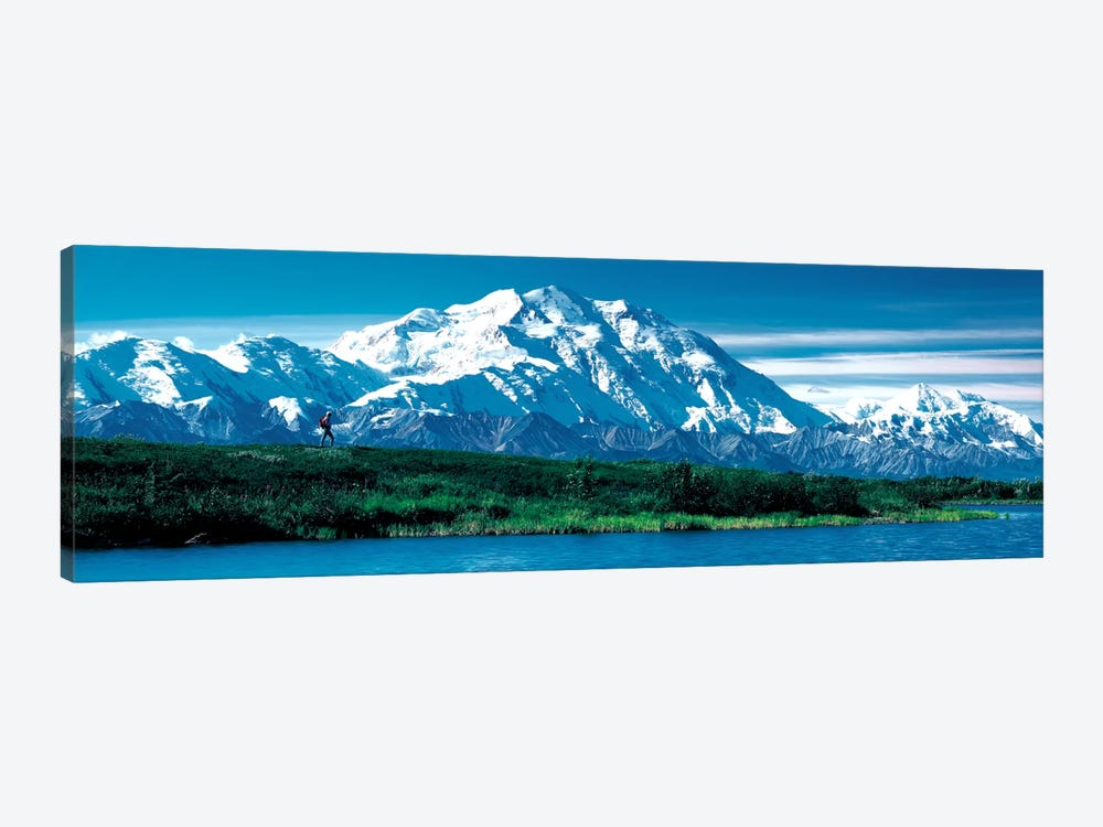 Denali National Park AK USA by Panoramic Images 1-piece Canvas Wall Art