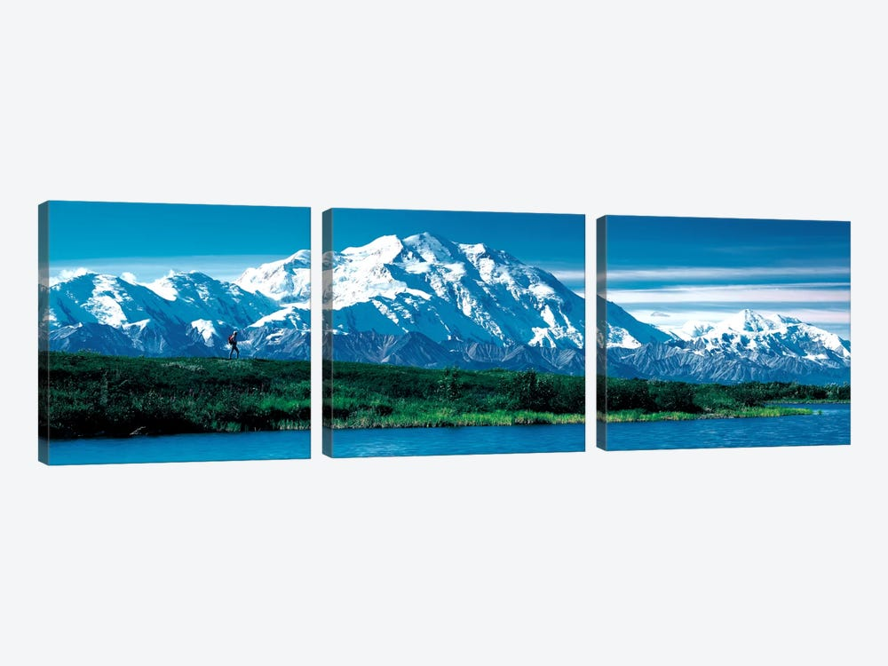 Denali National Park AK USA by Panoramic Images 3-piece Canvas Artwork