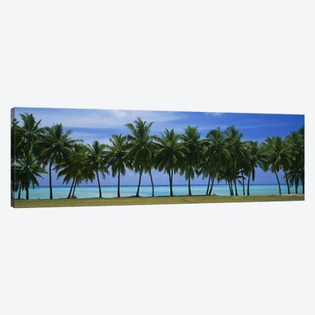 Palms & lagoon Aitutaki Cook Islands Canvas Print #PIM2821} by Panoramic Images Canvas Print
