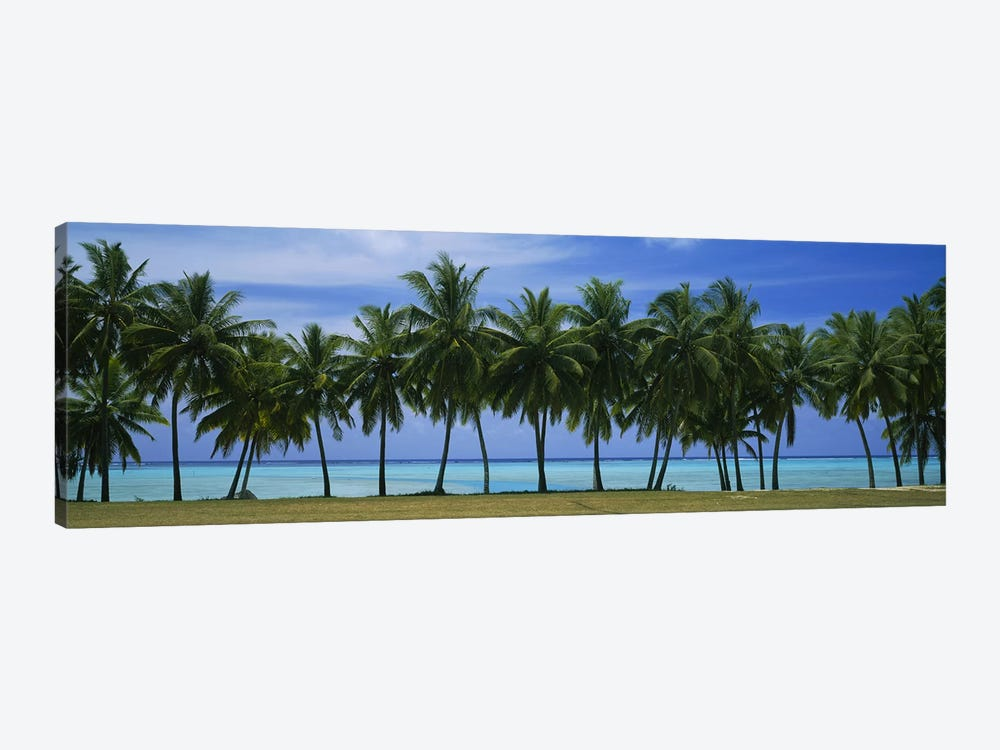 Palms & lagoon Aitutaki Cook Islands by Panoramic Images 1-piece Canvas Wall Art
