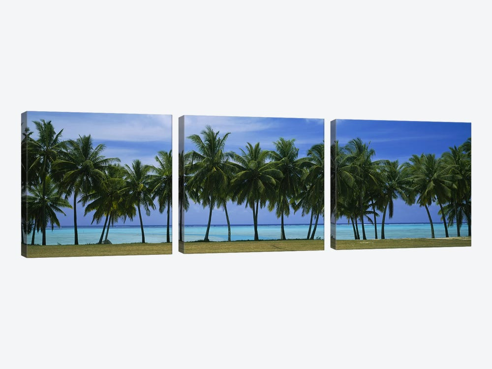 Palms & lagoon Aitutaki Cook Islands by Panoramic Images 3-piece Canvas Wall Art