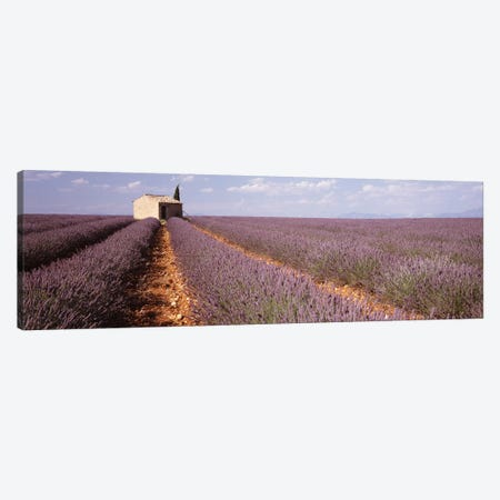 Lone Building In A Lavender Field, Valensole, Provence-Alpes-Cote d'Azur, France Canvas Print #PIM2866} by Panoramic Images Canvas Artwork