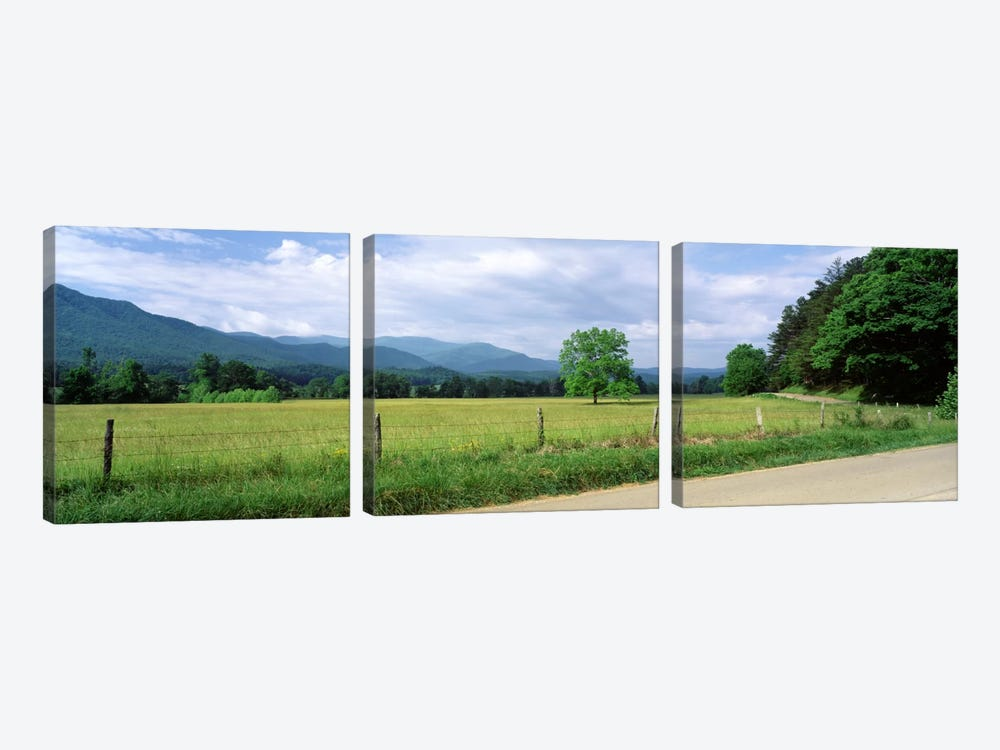 Valley Landscape, Cades Cove, Great Smoky Mountains National Park, Tennessee, USA by Panoramic Images 3-piece Canvas Art Print