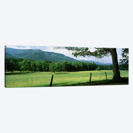 Parceled Meadow, Cades Cove, Great Smoky Mountains National Park, Tennessee, USA Canvas Print #PIM289} by Panoramic Images Canvas Artwork