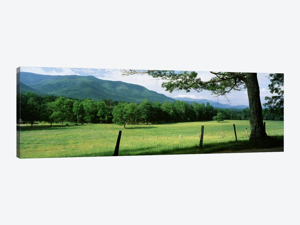 Parceled Meadow, Cades Cove, Great Smoky Mountains National Park, Tennessee, USA by Panoramic Images 1-piece Canvas Art