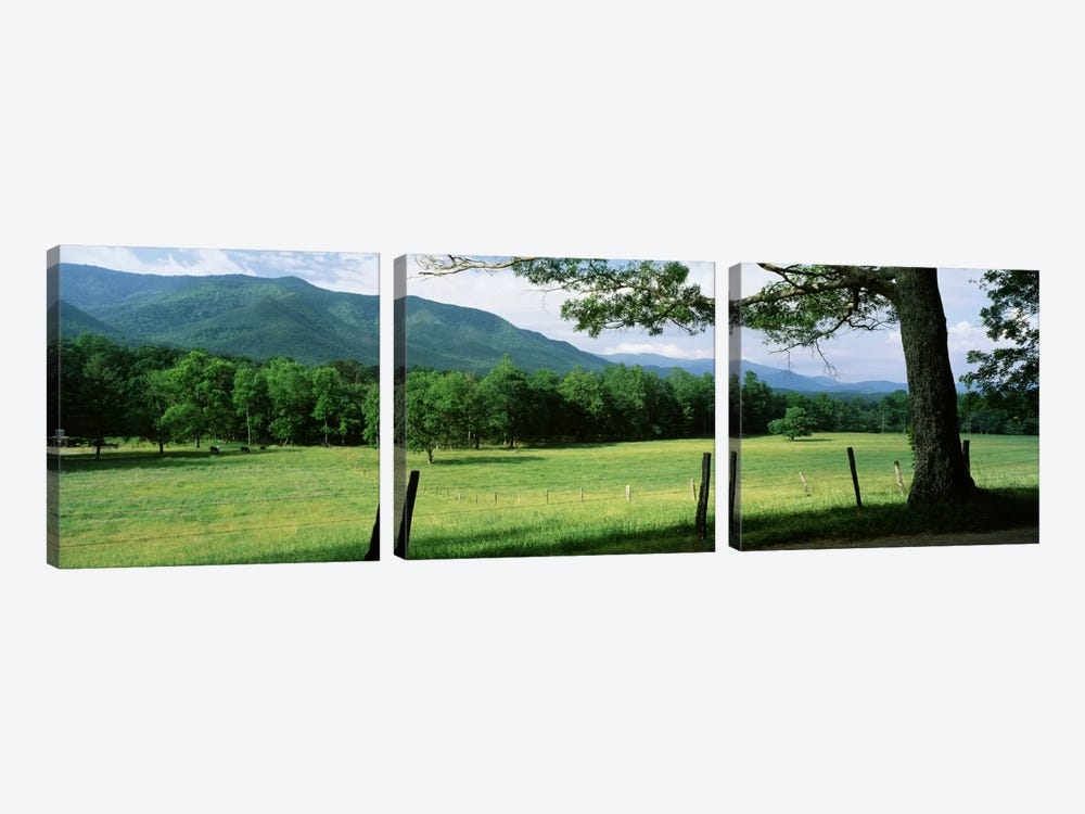 Parceled Meadow, Cades Cove, Great Smoky Mountains National Park, Tennessee, USA by Panoramic Images 3-piece Canvas Art