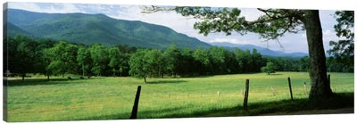 Parceled Meadow, Cades Cove, Great Smoky Mountains National Park, Tennessee, USA Canvas Art Print