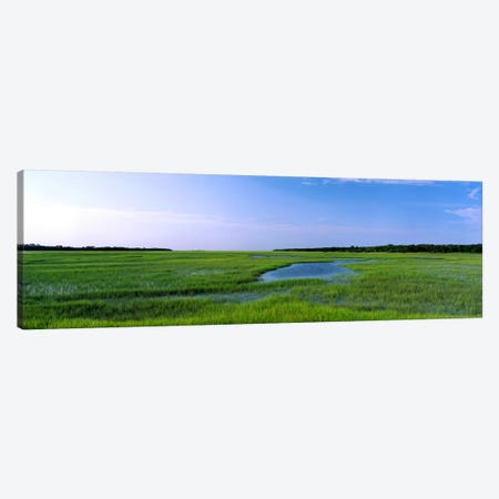 USA, Florida, Jacksonville, Atlantic Coast, Salt Marshes Canvas Print #PIM293} by Panoramic Images Canvas Art Print